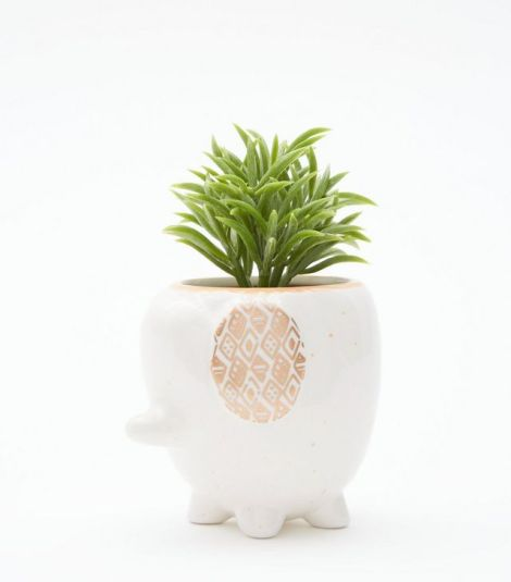 white-elephant-artificial-plant- New Look £5.24
